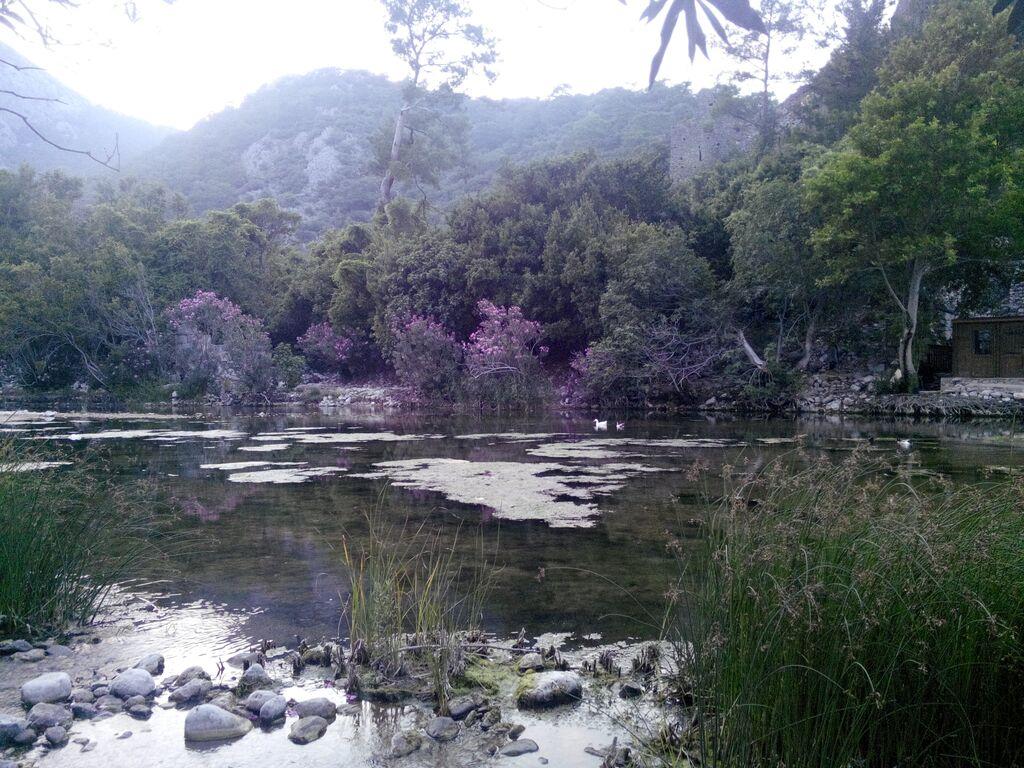 Olympos džungļos ar Sandru (insta-foto)