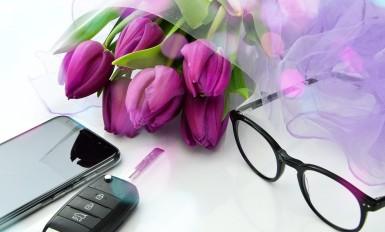tulip-3189210_960_720